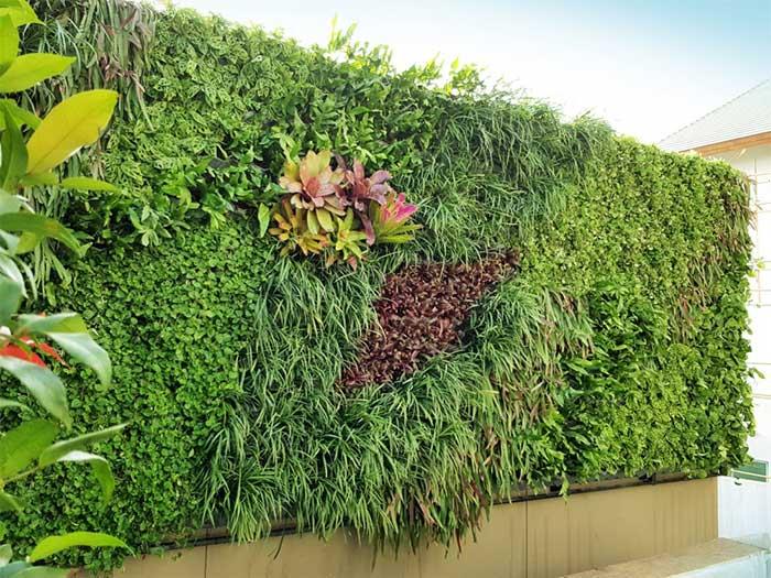 Verticle Garden help your living more comfort