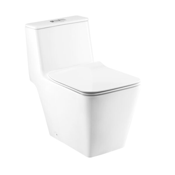 Cotto Simply Modish One piece toilet (Hyg
