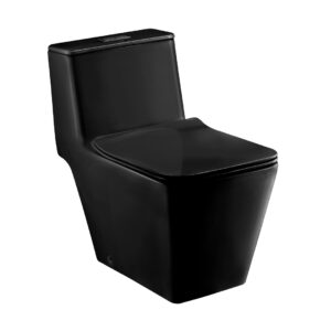 COTTO Commode India C1032MBK24072018